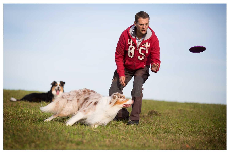 Hundetrainer Kai Hartmann - richtig mit dem Hund spielen