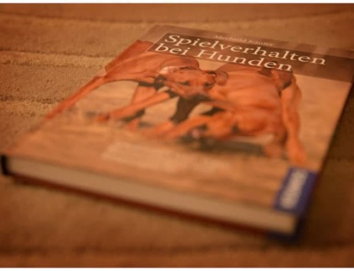 """Das Buch zum Spiel: """"Spielverhalten bei Hunden"""""""