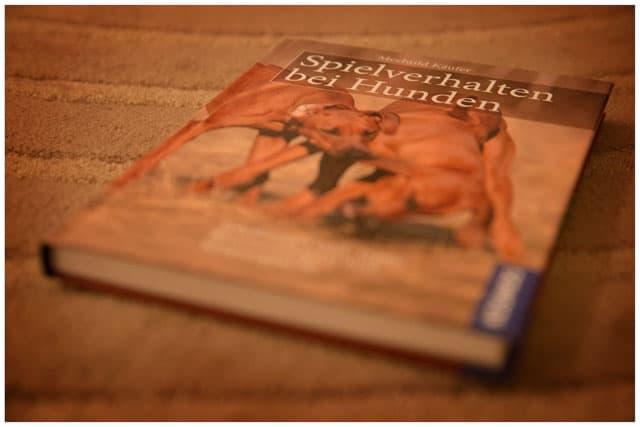 Buch Hundespiele - Kai Hartmann Hundetrainer Dresden