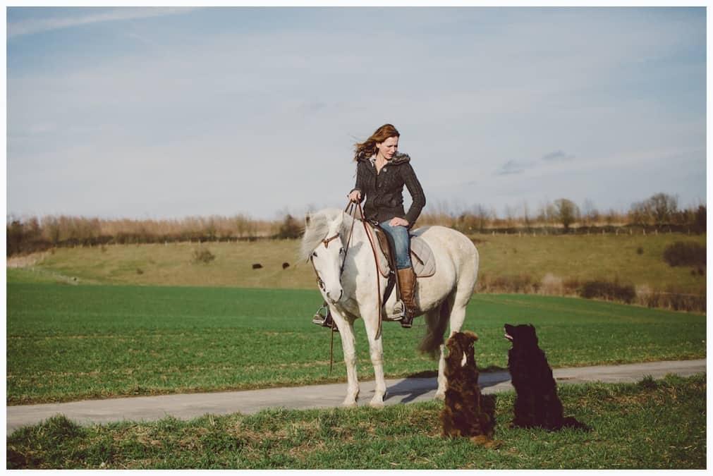 Workshop zum Reitbegleithund - Hundetrainer Kai Hartmann