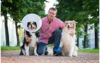 Vertrauen Hund - Mensch Hundetrainer Dresden Kai Hartmann