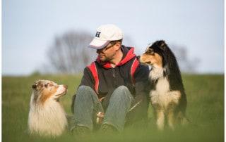 Hundeerziehung mit Kai Hartmann Hundetrainer Dresden
