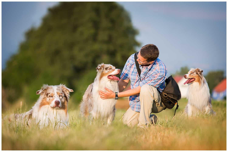 Theorie in der Hundeerziehung Hundetrainer Kai Hartmann Dresden