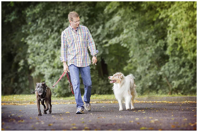 Hundetrainereffekt Hundeschule in Dresden