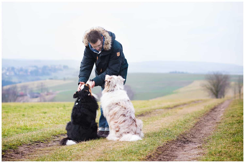 Anerkennung der Hundepersönlichkeit Kai Hartmann Hundetrainer Hundeschule