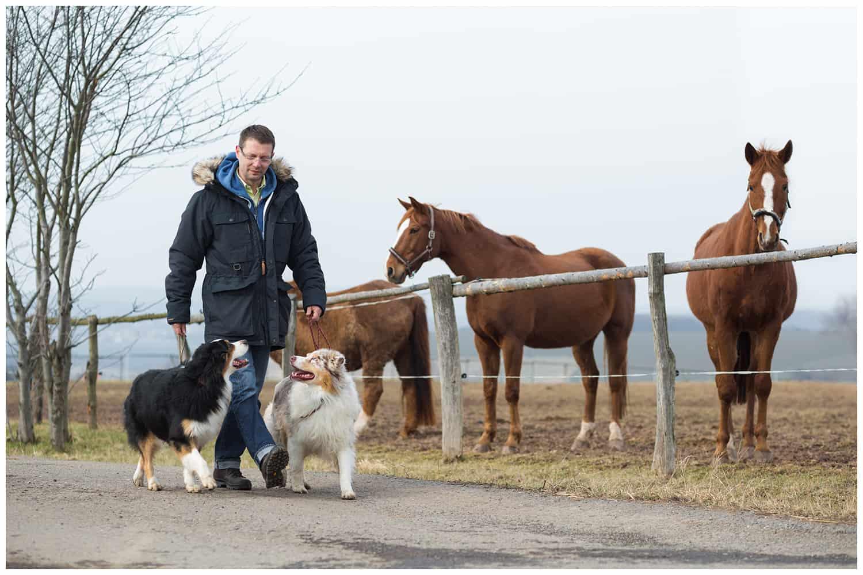 Leinenführigkeit beim Hund Kai Hartmann Hundetrainer Hundeschule Dresden