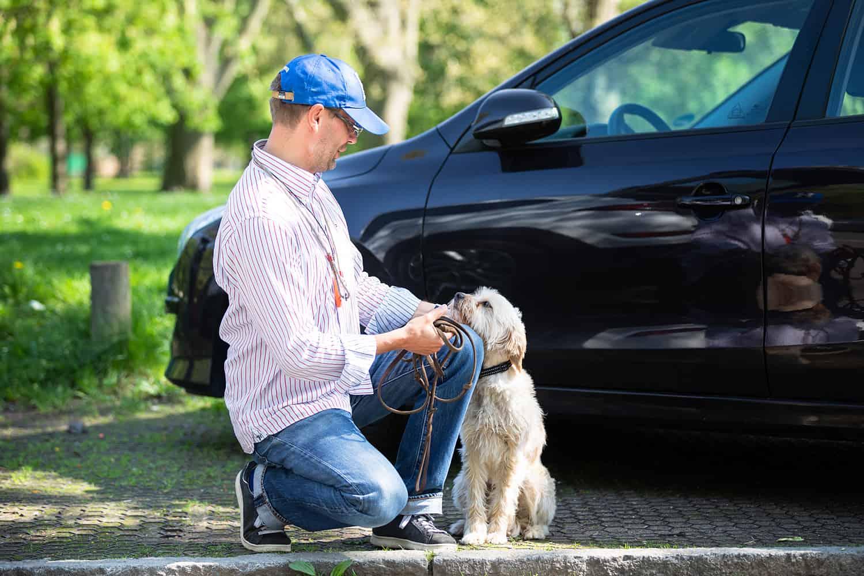 Hund umerzeihen Kai Hartmann