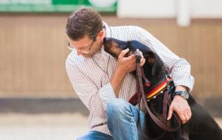 Was treibt den Hund an? Kai Hartmann Dresden