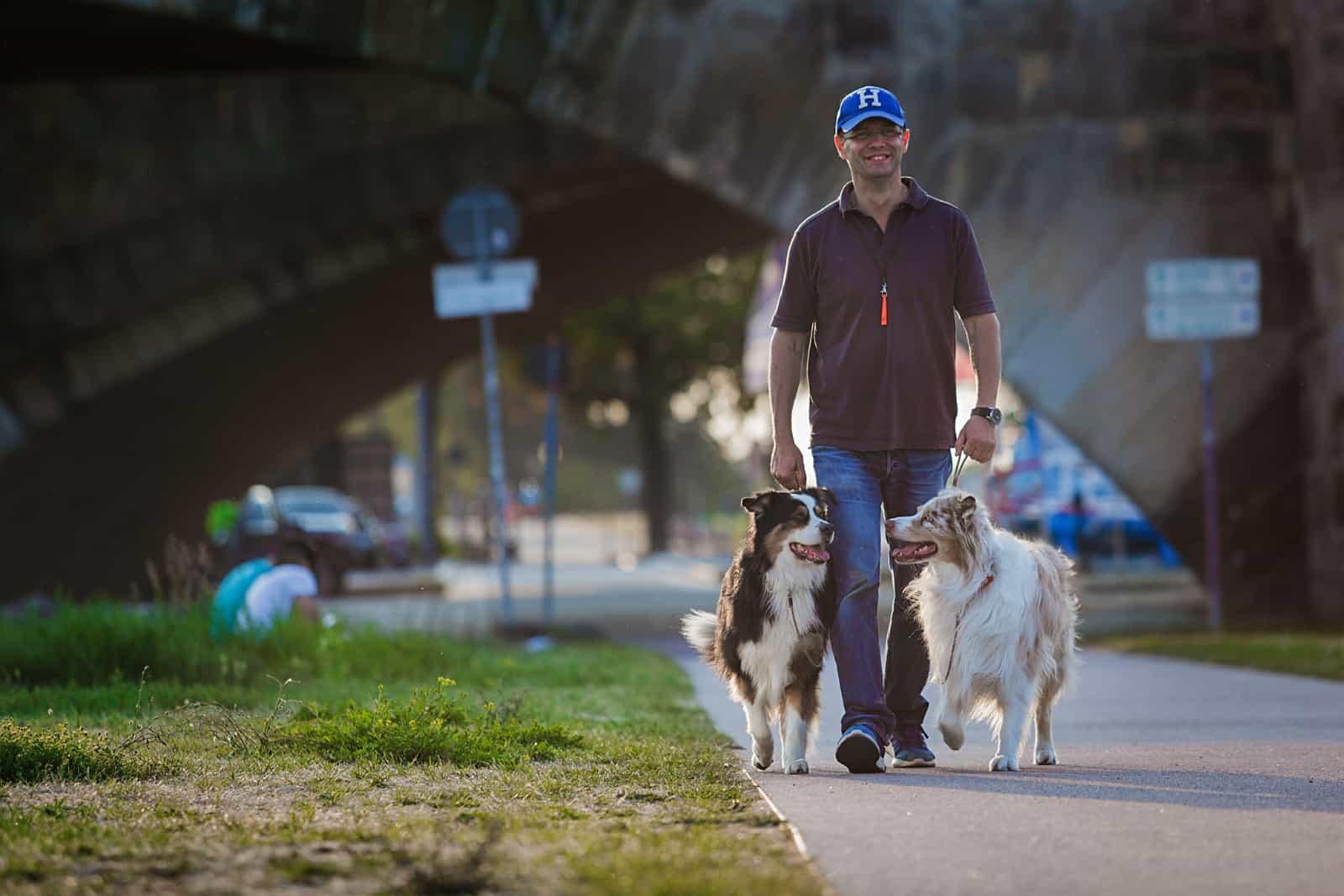 Gassirunde zum Glück Kai Hartmann Hundetrainer Dresden