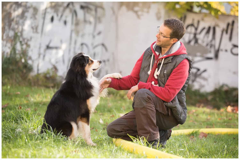 Körpersprache als Verständigungsmittel zwischen Hund und Mensch