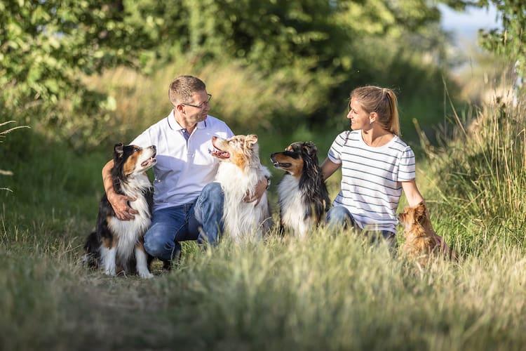 Gemeinsamkeiten-Mensch-und-Hund-Vermenschlichung-Hund-Hundetrainer-Hundeschule-Dresden-Kai-hartmann