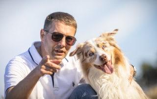 Hundeblick-Körpersprache-Hund-Hundetrainer-Dresden-Hundeschule-Kai-Hartmann