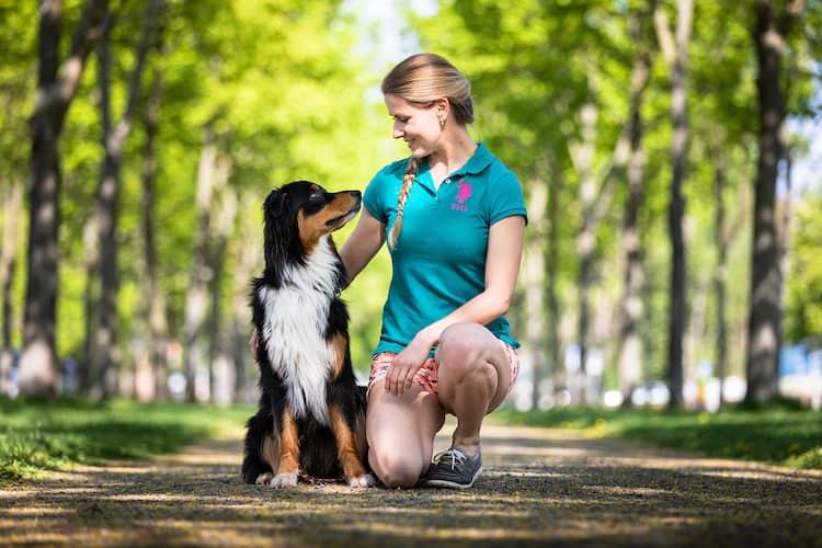 Hundetrainer-Dresden-Kai-Hartmann-Leckerli-oder-Lob