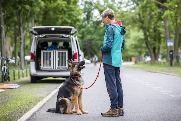 Hundeerziehung-in-5-Tagen-Hundeschule-Hundetrainer-Dresden-Kai-Hartmann-nancy-Wendler