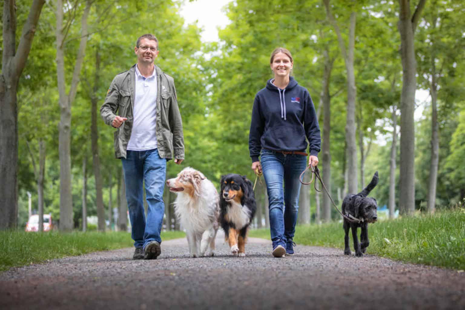 Hundetrainer Hundeschule Dresden Kai Hartmann Nancy Wendler Dein Weg Problemhund