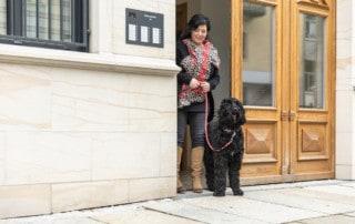 Damit deine Hundeerziehung gelingt Hundetrainer Hundeschule Dresden Kai Hartmann