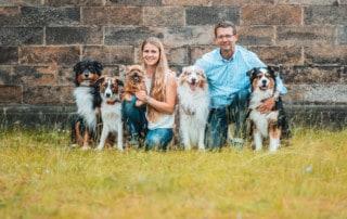 Hundeschule Dresden Fokus Blick Augenmerk Hundetrainer Dresden