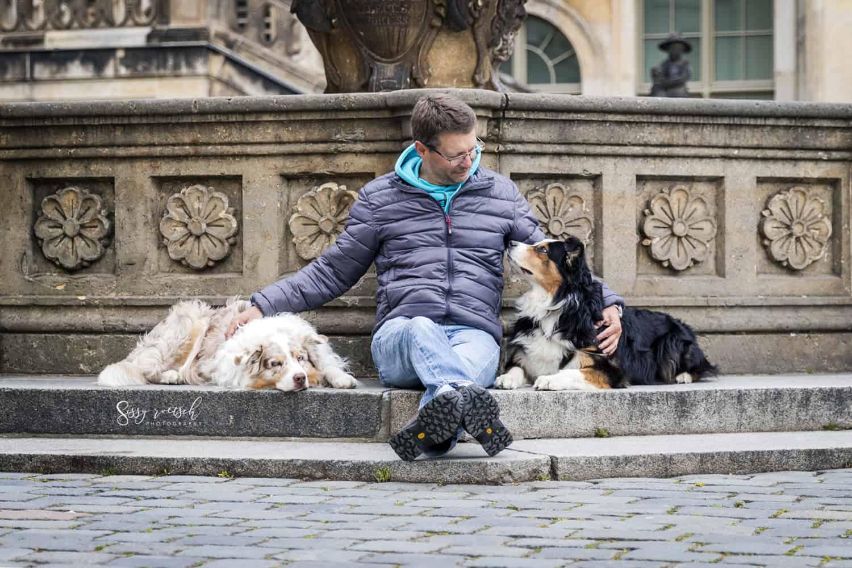 Hundeschule Dresden versagt, finde deine Vielleichts