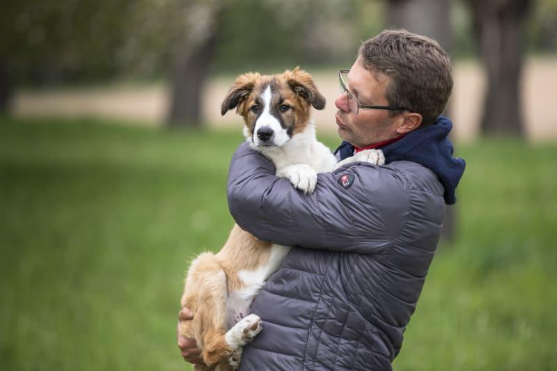 Hundeschule Dresden Kai Hartmann